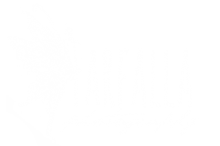 Farfalla Photography